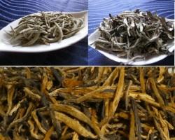 月光白&雲南紅茶