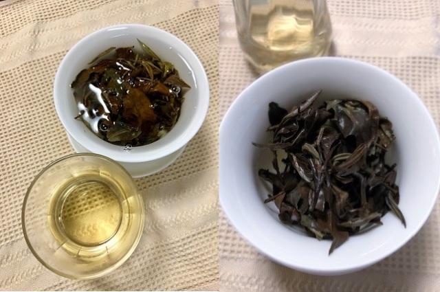 しけん白茶2